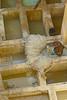 Fez, concerie (Zaporogo) Tags: fez concerie michelefez