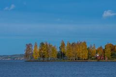 Lake Fryken (Mange J) Tags: europe k3ii magnusjakobsson pentax sverige sweden tamronspaf90mmf28 värmland autumn beauty forrest green nature orange pentaxart photowalk shearpened sky tree water wood yellow fryken värmlandslän se