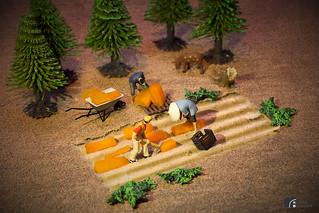 Bauern auf Feld