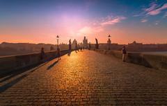Early Morning (Michele Naro) Tags: prag prague karlsbruecke karluvmost charlesbridge tschechien czechrepublik nikond610 samyang14mmf28