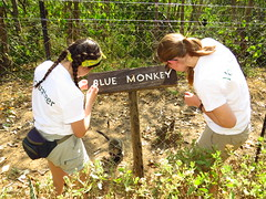 """Volunteers painting centre signs • <a style=""""font-size:0.8em;"""" href=""""http://www.flickr.com/photos/152934089@N02/37565974286/"""" target=""""_blank"""">View on Flickr</a>"""