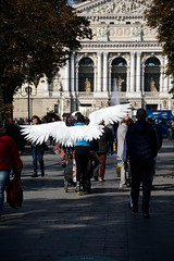 wings (Ihor Hlukhoi - intui.pro) Tags: outdoor ukraine lviv architecture art city ancient house palaces