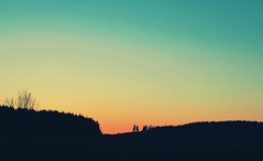 Rainbow sky (staceygallagher2) Tags: silhouette scenic ireland forest sun photography colourful beautiful nature rainbow sunset sky