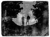 Private conversations (P. Correia) Tags: azores 2015 açores panasonicdmcfz18 pcorreia silhouettes smiguel blur privateconversations