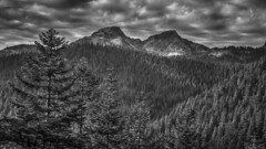 Beneath the Lowering Sky (writing with light 2422 (Not Pro)) Tags: mountrainiernationalpark blackandwhite bw mountain monochrome trees sonya77 sky clouds peaks landscape richborder