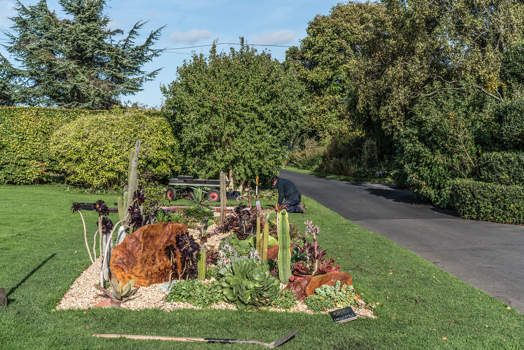 A VISIT TO THE BOTANIC GARDENS ON THE DAY AFTER AFTER STORM OPHELIA [MINIMAL STORM DAMAGE]-133320