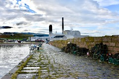 Boddam Harbour Peterhead Aberdeenshire 2017 (DanoAberdeen) Tags: trawlers fishingboats fishing salmon crabpots lobsterpots aberdeen cobbles walk path buchanhaven buchaness buchan peterhead powerstation peterheadpowerstation danoaberdeen dano danophotography candid amateur 2017 recent harbour grampian boddam nikon nikkor nikond750 scotland scottishhighlands geotagged seafarers northeastscotland psv wss shipspotters aberdeenshire tugboat shipspotting boats vessels tug autumn winter spring summer ecosse scotia schotland escotia nimbus clouds bluesky