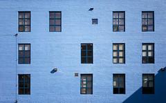 Masonry in Blue (Jack Landau) Tags: adelaide street east toronto architecture city urban brick wall blue paint masonry colour punched windows building perspective ontario canada color canon 5d mk ii mkii 2 jack landau