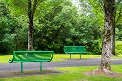 Ireland - Adare - Park (Marcial Bernabeu) Tags: bench benches banco bancos park parque trees arboles irlanda ireland irish irlandes adare green verde marc