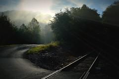 Crossroads (Explored) (Amandaclicks) Tags: road railroadtracks railroad tracks light mountains sun rays country countryroad rural tennessee knoxville trees treesinthemist treesinmist treesinfog fog mist