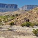 A Varied Landscape to the Sierra Ponce Cliffs and Santa Elena Canyon (Big Bend National Park)