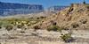 A Varied Landscape to the Sierra Ponce Cliffs and Santa Elena Canyon (Big Bend National Park) (thor_mark ) Tags: nikond800e day5 triptobigbendnationalpark bigbendnationalpark lookingwest capturenx2edited colorefexpro desert desertlandscape desertplantlife desertmountainlandscape outside nature landscape sunny blueskies mountains mountainsindistance mountainsoffindistance chihuahuandesert usbiospherereserve rollinghillsides cliffwalls sierraponcecliffs intermountainwest southwestbasinsandranges transpecostexasranges bigbendranges westbigbendranges project365 mesadeanguilla limestonecliffs santaelenacanyon tx unitedstates