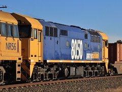8050 in Horsham (bukk05) Tags: 8050 railpage:class=111 railpage:loco=8050 rpaunsw80class rpaunsw80class8050 80class alco12251ce wimmera westernstandardgaugeline world explore export engine ce615a comeng railway railroad railpage rp3 rail railwaystation railwaystations ruralcityofhorsham train tracks tamron tamron16300 trains photograph photo pn pacificnational pnintermodal loco locomotive light horsepower hp horsham flickr freight diesel dieselelectriclocomotive station standardgauge sg spring australia artc 2017 zoom canon60d canon container victoria vr victorianrailway vline victorianrailways mainline nswr newsouthwales