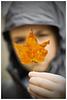 (Silverio Photography) Tags: fall autum newengland massachuetts suburb rain faceless canon 60d 50mm photoshop elements topaz adjust bokeh