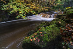 "Mostly Autumn (""A.S.A."") Tags: bowlees autumn teesdale river waterfall leaves longexposure slow shutter countydurham britain countryside sonya7rmkii sony2470f28gm leefilters 06softgrad heliopancpl polarizer colour asa2017"