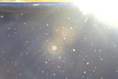 The Outerverse (Snorkle-suz) Tags: cosmology flyingtoclosetothesun mythical bowl outer macro closeup ordinaryart stilllife newzealand nz aotearoa canoneos600d canoneosrebelt3i canoneoskissx5 1855mm raynoxm250lens
