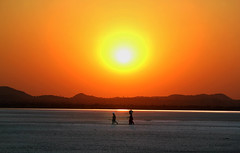 Not a drop to drink (Aseem Alagh) Tags: rajasthan incredible india old man woman sunset sun set color orange nature salt salty pan lake pond migratory birds hills desert oasis light play photography scenery village life rural
