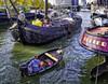 Maatje Leiden (glessew) Tags: platje schiff schip vessel platbodem boot boat bateau maatje leiden haringvliet rotterdam port hafen harbour haven mercury roeiboot jol