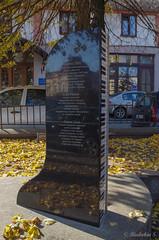 IMGP7648 (riabokin_serg) Tags: chernivtsi chernivetskaoblast ukraine ua