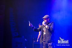 2017_10_27 Bosuil Battle of the tributebandsLIM_6477- Back on Track Joe Coverband Johan Horst-WEB