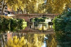 L' automne et le canal de Brienne (Hélène Quintaine) Tags: canal toulouse france octobre reflet personnage silhouette canaldebrienne automne hautegaronne