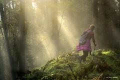 Zeberioko mendi martxa (Jabi Artaraz) Tags: jabiartaraz jartaraz zb euskoflickr mendimartxa montaña carrera paseo mañana despertar amanecer basoa monte paisaje landscape nature natura zeberio euskadi