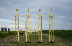 Landing Lights (Raf Degeest Photography) Tags: brusselsairport zaventem steenokkerzeel l25 planes