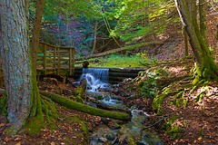 Natural Spring (Herculeus.) Tags: 2017 country day fall forest huronmanisteenationalforestmi landscape landscapes largosprings mi oct outdoor outdoors outside spring trees water waterfalls usa