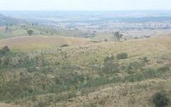1409 Grassy Creek Rd, Boorowa NSW