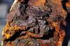 Spider on rust (greenoid) Tags: rust rost iron eisen spider spinne witterung corrosion old struktur structure