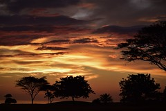 On the edge of the deep (TazNoMore) Tags: granpacifica nicaragua ocean oceanview sunset evening silhouette clouds
