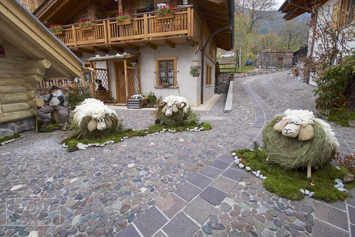 """Trentino Alto Adige • <a style=""""font-size:0.8em;"""" href=""""http://www.flickr.com/photos/104879414@N07/38167859156/"""" target=""""_blank"""">View on Flickr</a>"""