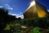 L'or de la Bièvre  - (3/5) -Jardin embouteillé (renécarrère) Tags: antony bièvre jardin jardinspartagés gymnase complexesportiflafontaine