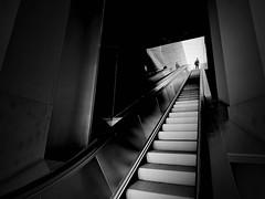 escalator (heinzkren) Tags: rolltreppe wien vienna austria schwarzweis bw blackandwhite monochrome street streetphotography urban stairs treppe people person aufgang spiegelung refection albertina linien lines stairway panasunic lumix architecture architektur
