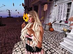 "🍂 ♫♪""Paint With All The Colors Of The Wind""♫♪ 🍂 (SherriOhCherri) Tags: nani {lefilcasse} thesecrethideout cd zibska momochuu alme catwa maitreya autumn fall fameshed"