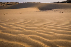 Rajasthan - Jaisalmer - Desert Safari with Camels-41