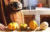 Autumn, 2. (sullen_snowflakes) Tags: zucche pumpikns mani hands tazza mug girl volpi foxes cucina kitchen autunno autumn