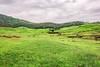 bhor15 (1 of 1) (rolixir) Tags: bhor greenary landscape natgeo