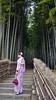 Adashino Nenbutsu-ji Bamboo Forest   Geisha in the woods (Toni Kaarttinen) Tags: arashiyama 嵐山 kansai japan 日本 japonia اليابان японія япония japó japonsko jaapan ژاپن japani japon xapón ιαπωνία יפן जापान japán jepang an tseapáin giappone 일본 japāna japonija јапонија japão јапан japonska japón hapon ประเทศญี่ปุ่น japonya nhật bản japanese kyoto kioto 京都 kyōto kyōtoshi holida vacation adashino nenbutsuji adashinonenbutsuji temple buddhist cemetery geisha geiko maiko girl woman bamboo forest bambooforest
