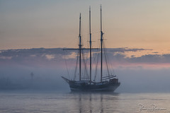 Oosterschelde (1918) leaving Stellendam (BraCom (Bram)) Tags: bracom oosterschelde 1918 ship vessel sailboat zeilschip boat tallship water sky cloud wolk reflection spiegeling sunrise zonsopkomst beacon baken mist fog morning ochtend stellendam binnenhaven harbor goereeoverflakkee zuidholland nederland southholland netherlands holland bramvanbroekhoven nl