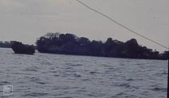Approaching Mafia egret Island