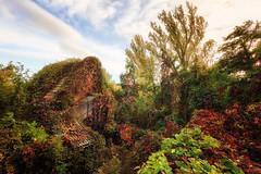 Retaken II (RobertFenyo) Tags: nature house colorful landscape decay beautiful szentendre