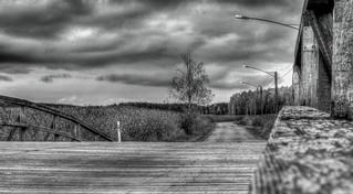 Bridge to Pig Island