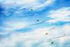 Sky Minions (Ian Sane) Tags: ian sane images skyminions kites long beach washington sky canon eos 5ds r camera ef70200mm f28l is usm lens