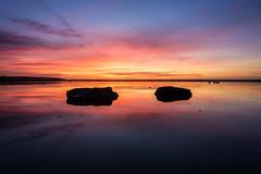 Low down. (@bill_11) Tags: isleofthanet naturereserve sunrise pegwellbay places themes kent weather england cliffsend unitedkingdom gb