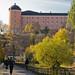 Uppsala castle in autumn