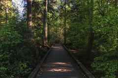 Stanley Park (blichb) Tags: 2016 britishcolumbia kanada sonya7rii stanleypark vancouver zeissloxia235 blichb ca
