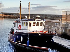 Wild Rose (calzer) Tags: maritime harbour scotland moray morning vessel boat lossiemouth rose wild