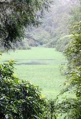 "DSCF2594 (JBBTaipei) Tags: taiwan yilan ""cold lake yuanshan"