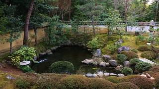 Heart Shaped Koi Pond / Kyoto Myoshin-ji Daio-in 京都 妙心寺 大雄院